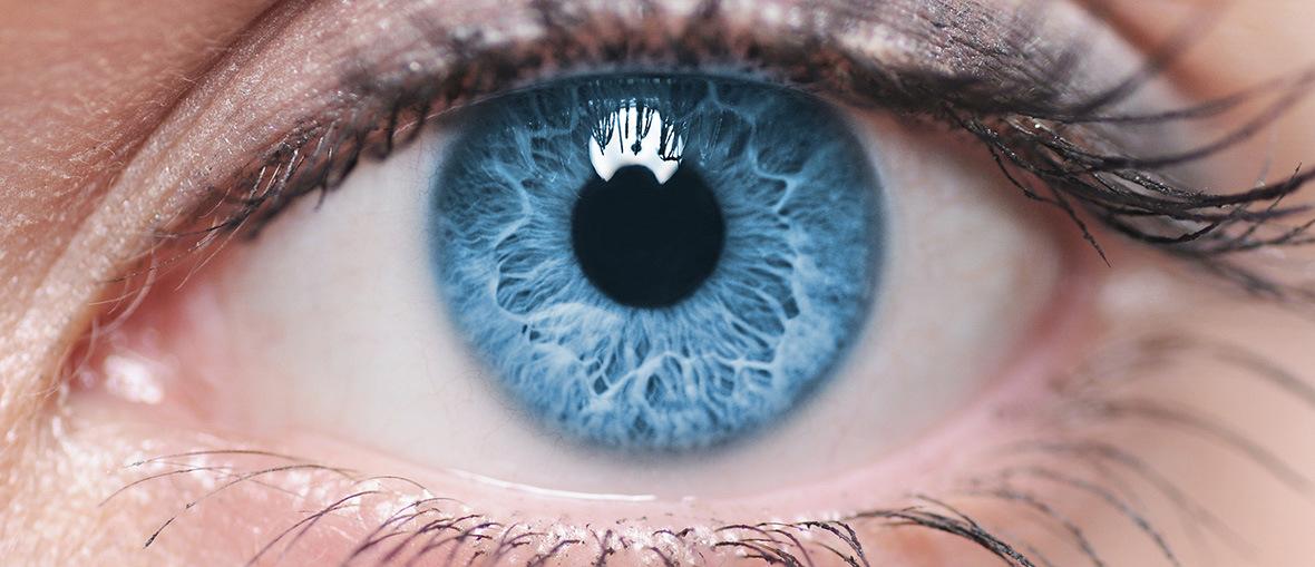 9829d2e0a0f5 Det unikke øje - Profil Optik