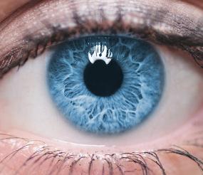 Dina ögon är unika